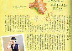 食品のイラスト制作/ヨガ雑誌